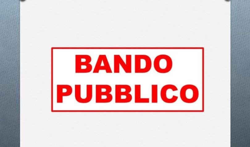 BANDO-850x500