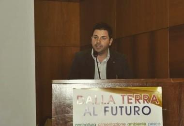Il presidente Terre di Ulivi Umberto Porrelli