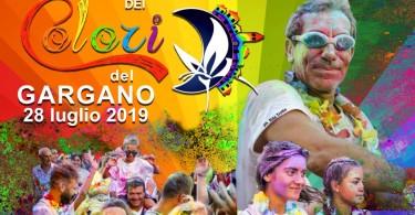 festival 2-3