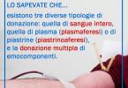 losapevateche01