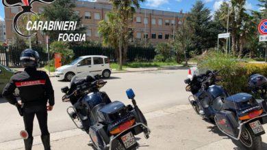 Photo of CERIGNOLA: NON SI FERMA ALL'ALT E FUGGE IN MOTO A FOLLE VELOCITÀ. ARRESTATO