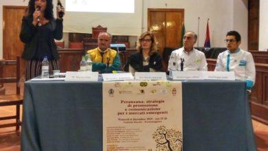 Photo of TORREMAGGIORE: LA PERANZANA  PROTAGONISTA INDISCUSSA