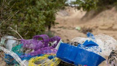 Photo of Nel mare del Gargano tonnellate di rifiuti abbandonati, 14 arresti