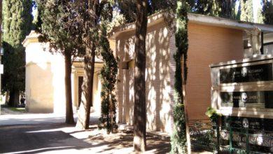 Photo of San Severo: piantumati 50 nuovi cipresso nel cimitero cittadino