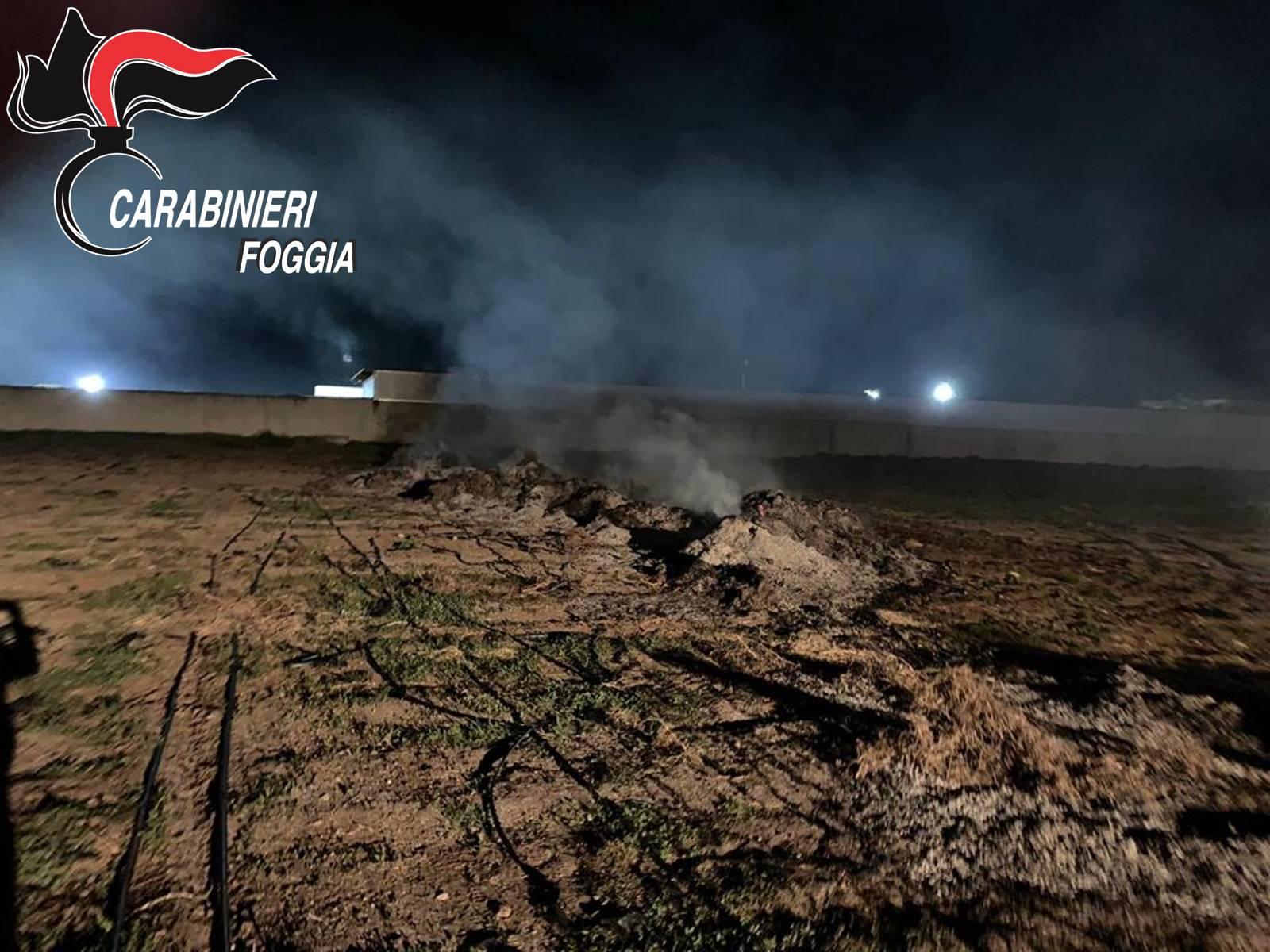Photo of Fuochi tossici: i carabinieri battono le campagne alla ricerca dei responsabili