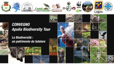"""Photo of A Lesina il secondo convegno """"Apulia Biodiversity Tour 2019/2020"""""""
