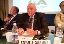"""Photo of Vigneto abbattuto a San Severo. Carrabba (Cia): """"Atto criminale e atroce"""""""