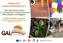 Photo of Agricoltura sociale ed educazione alimentare, pubblicato il bando 2.3 del GAL Daunia Rurale 2020