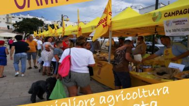 Photo of Vico, il 5 agosto gli stand di Campagna Amica in Villa Comunale
