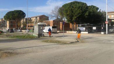 Photo of San Severo: Al via lo sfalcio dell'erba in città
