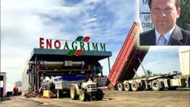 Photo of Sventato furto di oltre 100 quintali di olive del tipo Peranzana al frantoio Enoagrimm in San Severo
