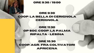 """Photo of Incontro con la senatrice Gisella Naturale """"Ripartiamo dalla Cooperazione. Focus di imprese Cooperative"""""""
